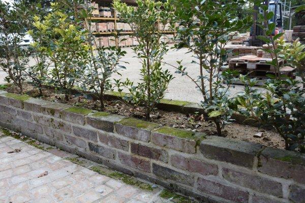 Briques anciennes